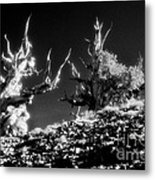The Ancients - 1001 Metal Print