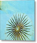 Transparent-sea Metal Print by Sharon Coty