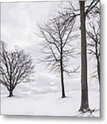 Trees And Snow Metal Print