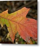Turn A Leaf Metal Print