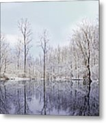 Turtle Pond Metal Print by Kitty Ellis