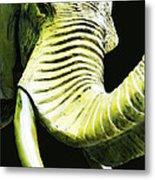 Tusk 1 - Dramatic Elephant Head Shot Art Metal Print by Sharon Cummings