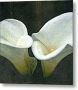 Two Metal Print by Cathie Tyler