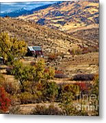Viewing The Old Barn Metal Print by Robert Bales