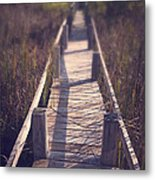 Walkway Through The Reeds Appalachian Trail Metal Print by Edward Fielding