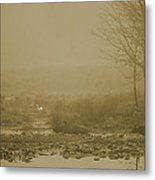 Water Buffalo And Egret Metal Print by Frank Feliciano