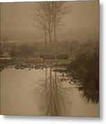 Water Buffalo Morning Fog Metal Print