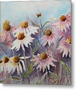 White And Pink Coneflowers Metal Print