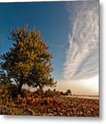 Wild Cherry Metal Print by Davorin Mance