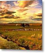 Wild Lands Of Nevada  Metal Print by Jeanne  Bencich-Nations