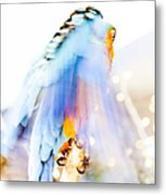 Wing Dream Metal Print by Fran Riley