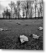 Winter Beckons Metal Print by Benjamin Yeager
