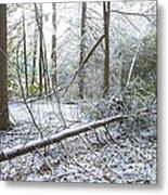 Winter Fallen Tree Metal Print