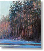 Winter Pines Metal Print by Ed Chesnovitch
