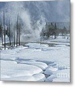 Winter Solitude Metal Print