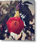Worth It All Metal Print by Laurie Search