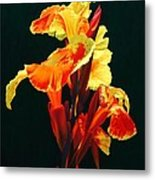 Yellow Cannas Metal Print