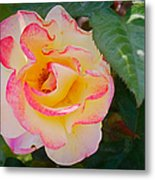 You Love The Roses - So Do I Metal Print by Christine Till