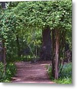 Zilker Botanical Tree Arbor Metal Print