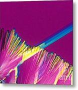 Adenosine Triphosphate Metal Print by Michael W. Davidson