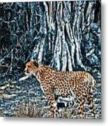 Alert Cheetah Metal Print by Darcy Michaelchuk