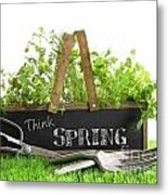 Garden Box With Assortment Of Herbs And Tools Metal Print