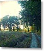 Landscape Near Mauvezin Metal Print