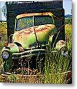 Old Green Truck Metal Print by Garry Gay