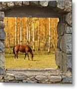 Stone Window View And Beautiful Horse Metal Print