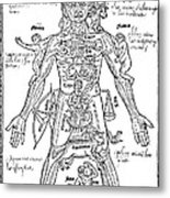 Zodiac Man, Medical Astrology Metal Print by Science Source