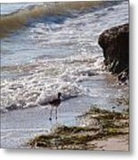 And I Think To Myself ...what A Wonderful World Metal Print