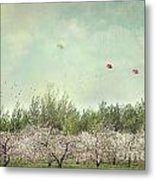 Orchard Of Apple Blossoming Tees Metal Print