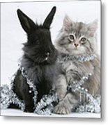 Kitten And Rabbit Getting Into Tinsel Metal Print