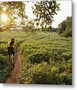 A Bicyclist Rides On A Path Metal Print by Skip Brown