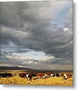 A Cloud-filled Sky Over A Yakima Valley Metal Print