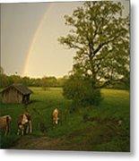 A Double Rainbow Arcs Over A Field Metal Print
