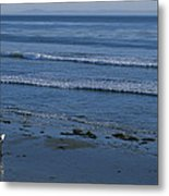 A Longboard Surfer Watches The Surf Metal Print by Rich Reid