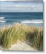 A Scenic Hillside Of The Beach Metal Print by Bill Hatcher