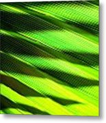 A Shadow Of A Palmfrond On A Palmfrond Metal Print by Catherine Natalia  Roche