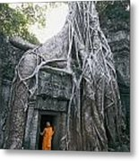A Strangler Figs Gnarled Roots Creep Metal Print by Paul Chesley