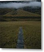 A Wooden Pathway Leads To An Metal Print by Randy Olson