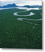 Aerial View Of The Salak River. Mount Metal Print by Tim Laman