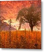 Aflame Metal Print by Debra and Dave Vanderlaan