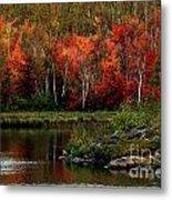 Autumn In Canada 2 Metal Print