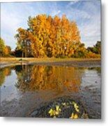 Autumn Nest Metal Print