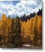 Autumn Splendor Metal Print by Carol Cavalaris