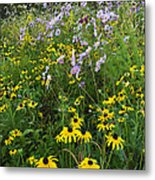 Autumn Wildflowers - D007762 Metal Print by Daniel Dempster