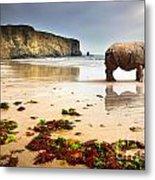 Beach Rhino Metal Print