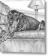 Bedtime - Doberman Pinscher Dog Art Print Metal Print by Kelli Swan