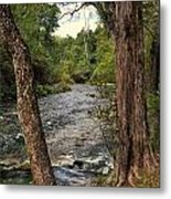 Blue Spring Branch Metal Print